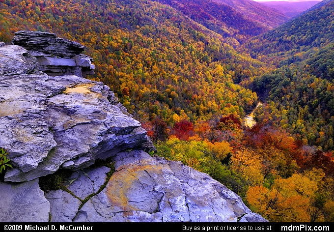 Blackwater Canyon (Blackwater Canyon Picture 047 - October 10, 2009 from Blackwater Falls State Park, West Virginia)