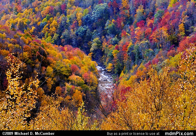 Blackwater Canyon (Blackwater Canyon Picture 076 - October 11, 2009 from Blackwater Falls State Park, West Virginia)