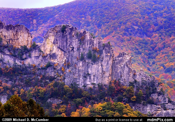 Seneca Rocks (Seneca Rocks Picture 111 - October 12, 2009 from Spruce Knob/Seneca Rocks National Recreation Area)