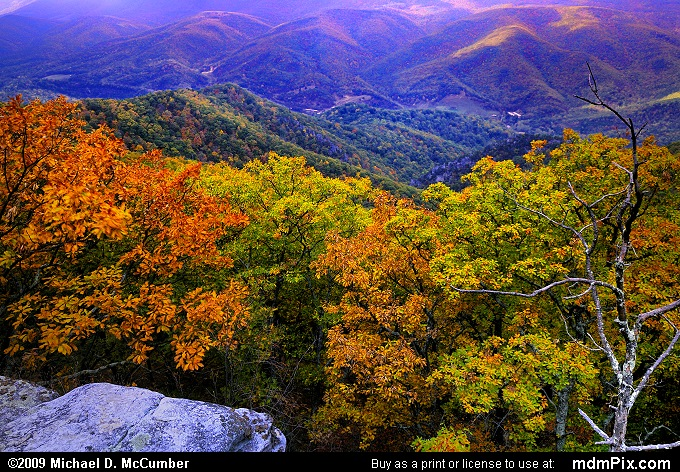 North Fork Valley (North Fork Valley Picture 003 - October 13, 2009 from Spruce Knob/Seneca Rocks National Recreation Area)