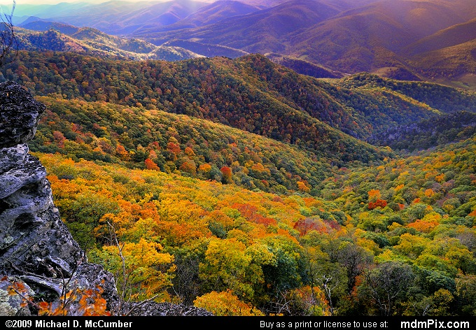 North Fork Valley (North Fork Valley Picture 100 - October 13, 2009 from Spruce Knob/Seneca Rocks National Recreation Area)