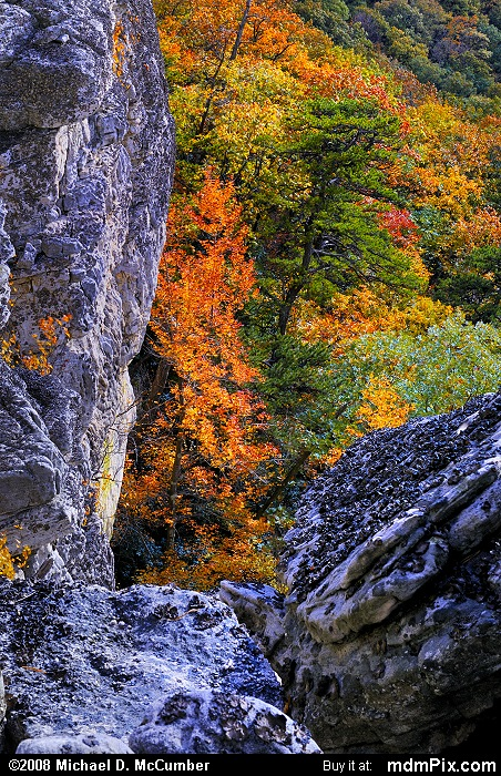 North Fork Trail (North Fork Trail Picture 105 - October 13, 2009 from Spruce Knob/Seneca Rocks National Recreation Area)
