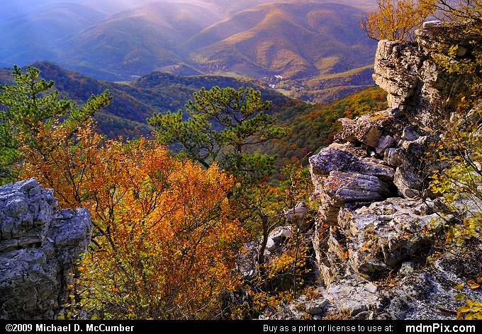 North Fork Valley (North Fork Valley Picture 109 - October 13, 2009 from Spruce Knob/Seneca Rocks National Recreation Area)
