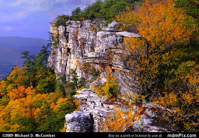 Falcon Cliff on North Fork Mountain with Fall Color