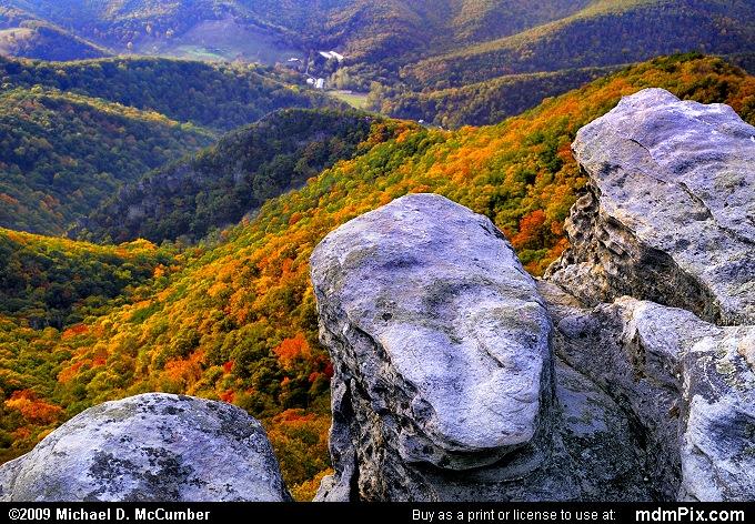 Pillars of Tuscarora Sandstone on North Fork Mountain