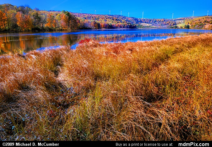 Cranberry Glade Lake (Cranberry Glade Lake Picture 046 - October 21, 2009 from PA State Game Land 111)