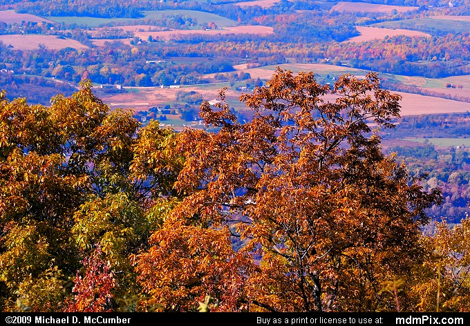 Chestnut Ridge (Chestnut Ridge Picture 073 - October 22, 2009 from Georges Township (Fayette County), Pennsylvania)