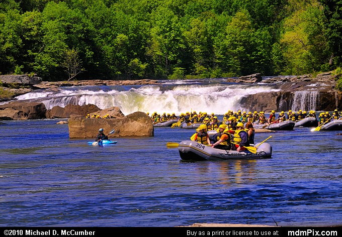 Ohiopyle Falls (Ohiopyle Falls Picture 006 - May 15, 2010 from Ohiopyle State Park, Pennsylvania)