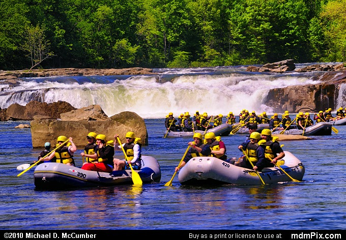 Ohiopyle Falls (Ohiopyle Falls Picture 007 - May 15, 2010 from Ohiopyle State Park, Pennsylvania)