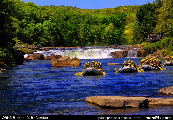 Youghiogheny River (Youghiogheny River Picture 010 - May 15, 2010 from Ohiopyle State Park, Pennsylvania)