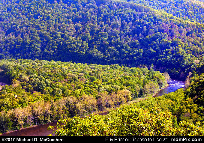 LH Trail's Youghiogheny River Gorge Vista (LH Trail's Youghiogheny River Gorge Vista Picture 030 - May 15, 2010 from Ohiopyle State Park, Pennsylvania)
