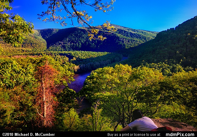 LH Trail's Youghiogheny River Gorge Vista (LH Trail's Youghiogheny River Gorge Vista Picture 050 - May 15, 2010 from Ohiopyle State Park, Pennsylvania)