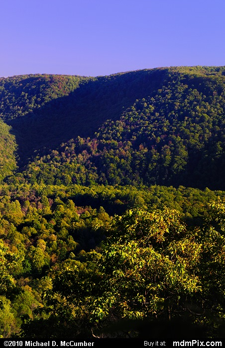 Laurel Ridge (Laurel Ridge Picture 055 - May 15, 2010 from Ohiopyle State Park, Pennsylvania)