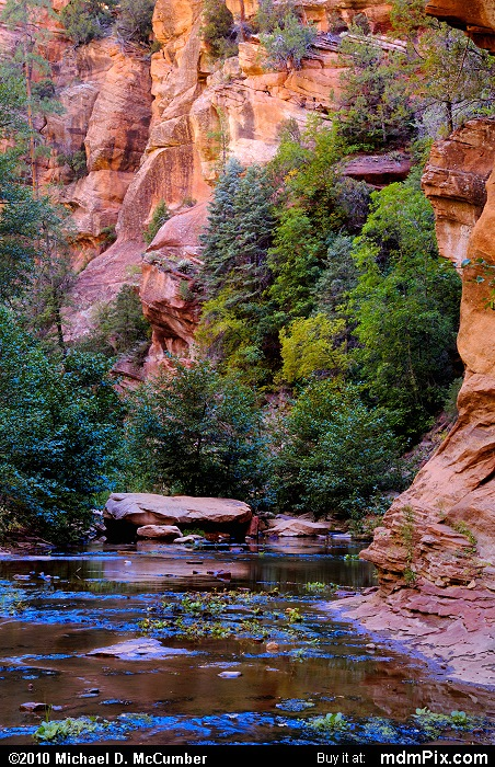 West Fork of Oak Creek Canyon (West Fork of Oak Creek Canyon Picture 038 - September 21, 2010 from Red Rock Secret Mountain Wilderness, Arizona)