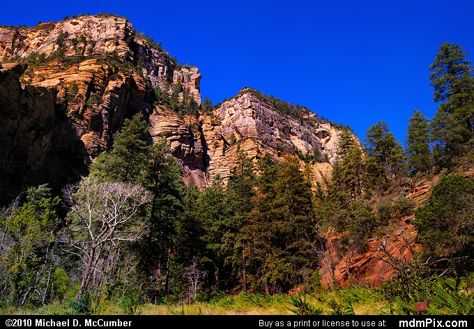 Oak Creek Canyon (Oak Creek Canyon Picture 055 - September 21, 2010 from Red Rock Secret Mountain Wilderness, Arizona)