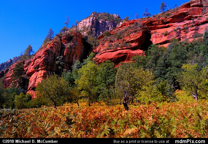 Oak Creek Canyon (Oak Creek Canyon Picture 058 - September 21, 2010 from Red Rock Secret Mountain Wilderness, Arizona)