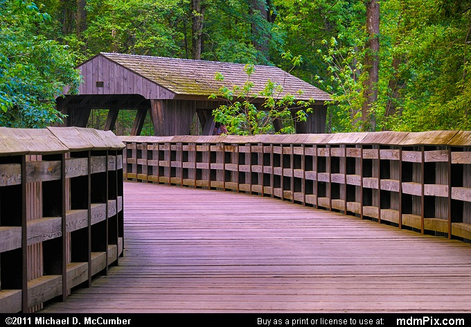 Wildwood Covered Bridge with Fresh Spring Greenery