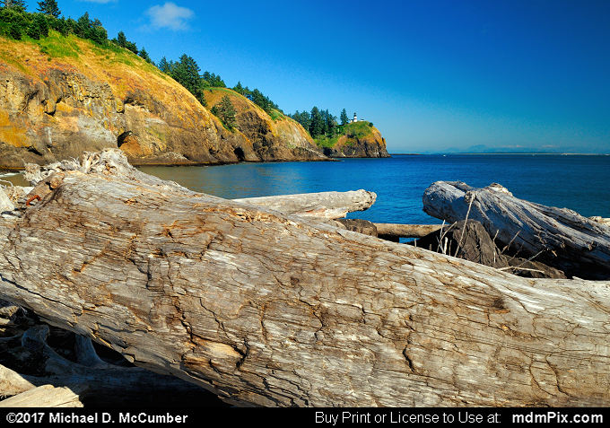 Log (Log Picture 008 - July 30, 2011 from Cape Disappointment State Park, Washington)