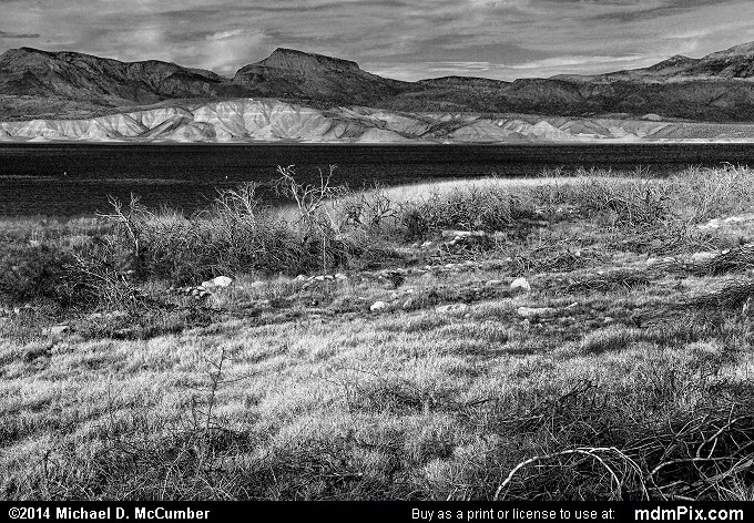 Theodore Roosevelt Lake (Theodore Roosevelt Lake Black and White Picture 036 - February 2, 2014 from Roosevelt, Arizona)