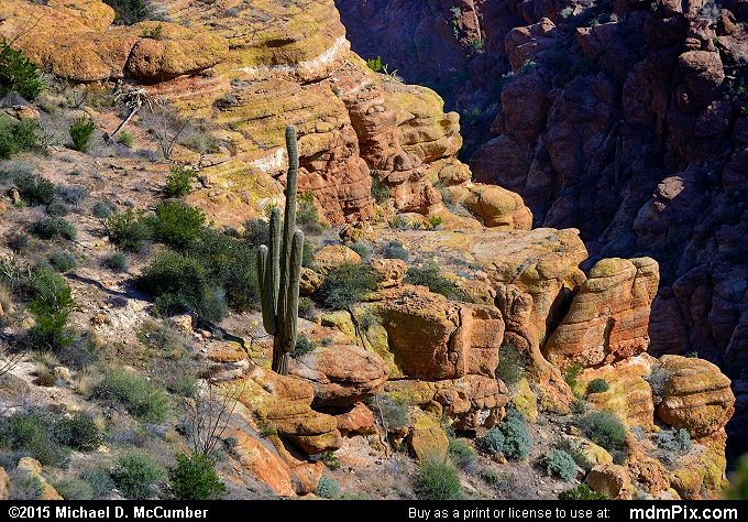 Fish Creek Canyon (Fish Creek Canyon Picture 020 - February 16, 2015 from Superstition Wilderness (Arizona))