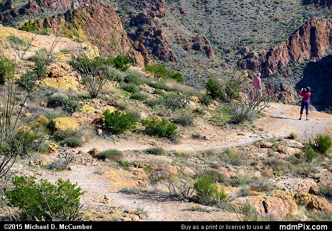Fish Creek Hill (Fish Creek Hill Picture 030 - February 16, 2015 from Superstition Wilderness (Arizona))