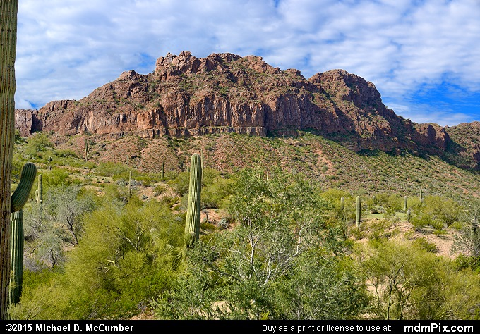 San Tan Mountains (San Tan Mountains Picture 008 - February 22, 2015 from San Tan Mountain Regional Park, Arizona)