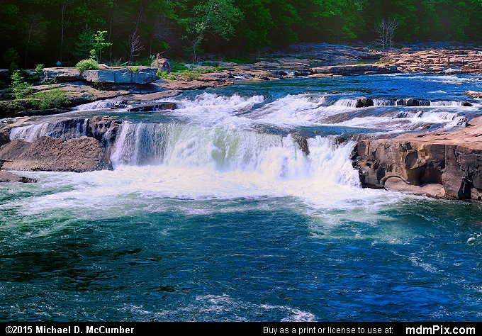 Ohiopyle Falls (Ohiopyle Falls Picture 002 - May 14, 2015 from Ohiopyle State Park, Pennsylvania)