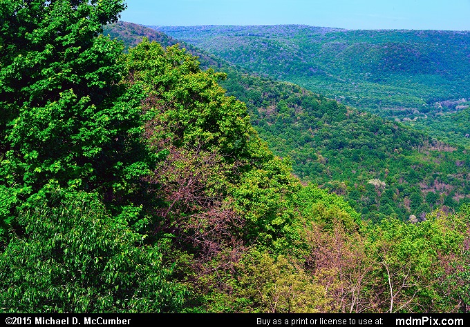 Baughman Rock Overlook (Baughman Rock Overlook Picture 005 - May 14, 2015 from Ohiopyle State Park, Pennsylvania)