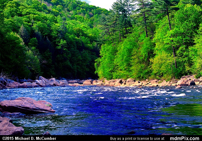 Youghiogheny River (Youghiogheny River Picture 020 - May 14, 2015 from Ohiopyle State Park, Pennsylvania)