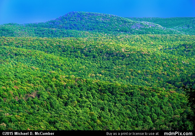 Sugarloaf Knob (Sugarloaf Knob Picture 026 - May 14, 2015 from Ohiopyle State Park, Pennsylvania)