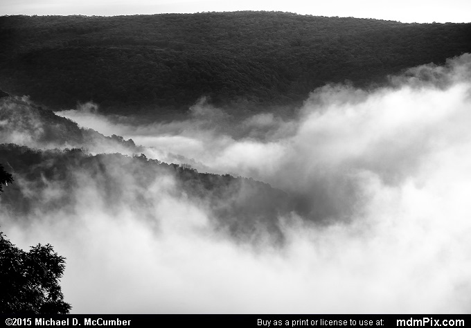 Fog (Fog Black and White Picture 008 - September 19, 2015 from Ohiopyle State Park, Pennsylvania)