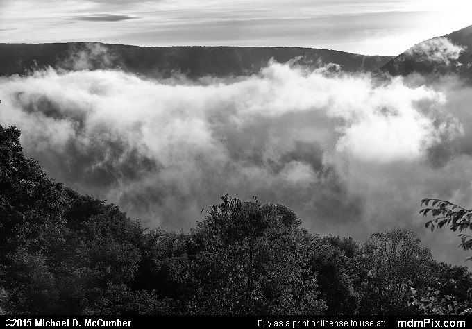 Fog (Fog Black and White Picture 010 - September 19, 2015 from Ohiopyle State Park, Pennsylvania)