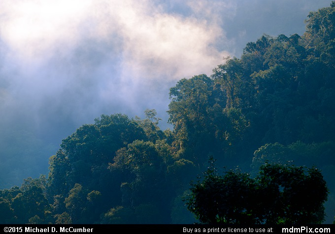 Fog (Fog Picture 021 - September 19, 2015 from Ohiopyle State Park, Pennsylvania)