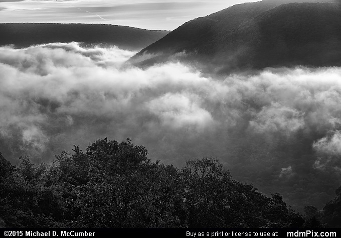 Baughman Rock Overlook (Baughman Rock Overlook Black and White Picture 024 - September 19, 2015 from Ohiopyle State Park, Pennsylvania)