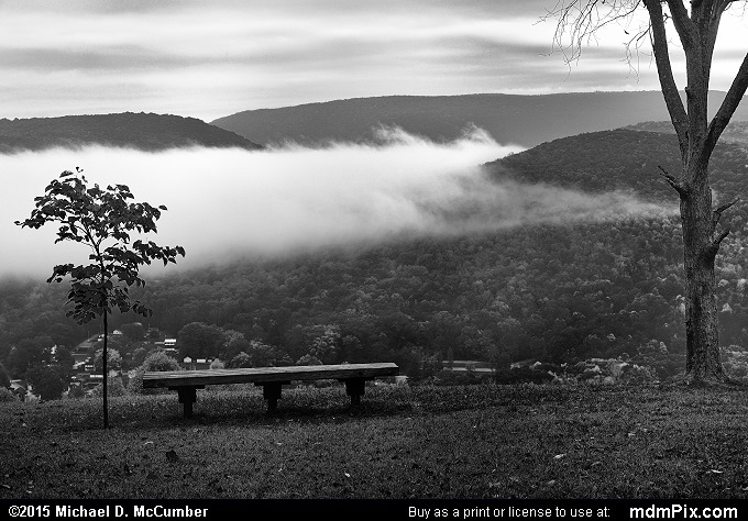 Park Bench (Park Bench Black and White Picture 026 - October 8, 2015 from Ohiopyle State Park, Pennsylvania)
