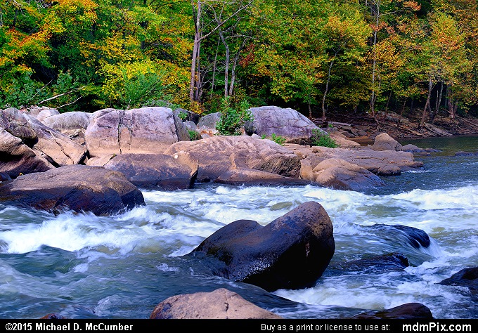 Youghiogheny River (Youghiogheny River Picture 063 - October 8, 2015 from Ohiopyle State Park, Pennsylvania)