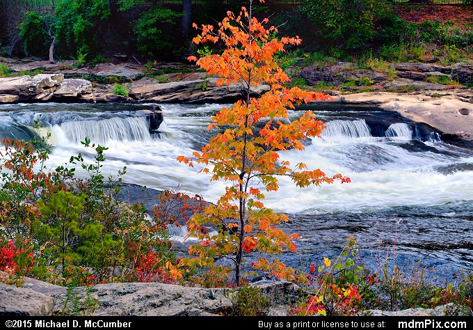 Youghiogheny River (Youghiogheny River Picture 078 - October 8, 2015 from Ohiopyle State Park, Pennsylvania)
