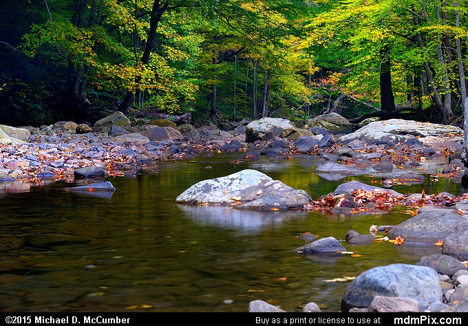 Dunbar Creek (Dunbar Creek Picture 101 - October 8, 2015 from PA State Game Land 51)
