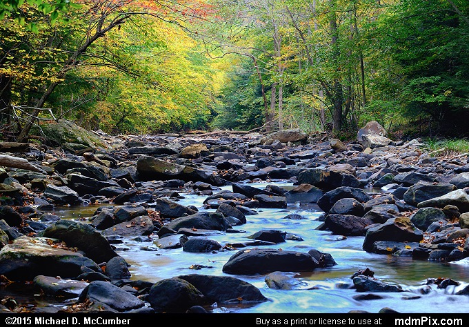 Dunbar Creek (Dunbar Creek Picture 103 - October 8, 2015 from PA State Game Land 51)