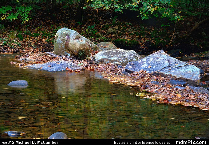 Dunbar Creek (Dunbar Creek Picture 104 - October 8, 2015 from PA State Game Land 51)