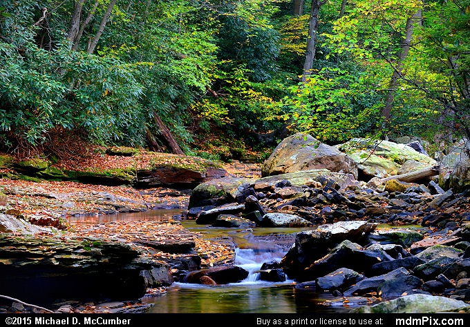 Dunbar Creek (Dunbar Creek Picture 107 - October 8, 2015 from PA State Game Land 51)