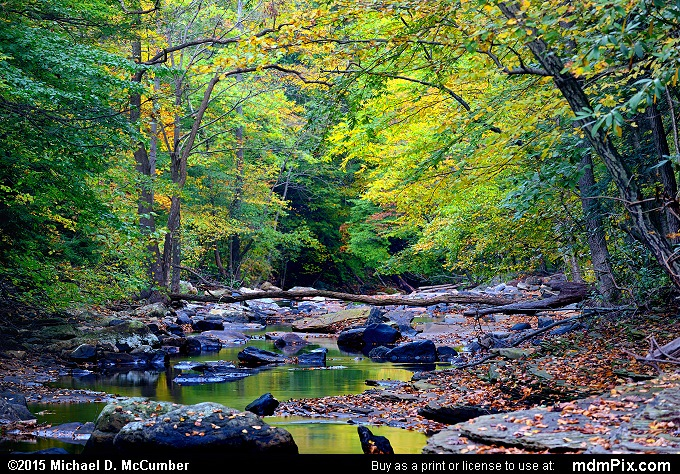Dunbar Creek (Dunbar Creek Picture 109 - October 8, 2015 from PA State Game Land 51)