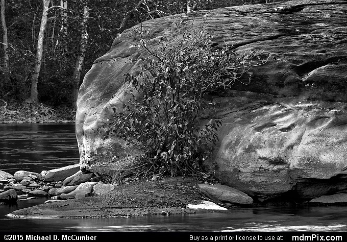 Youghiogheny River (Youghiogheny River Black and White Picture 013 - October 21, 2015 from Dunbar Township, Pennsylvania)