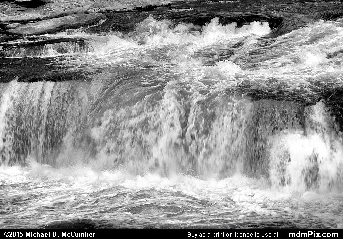 Ohiopyle Falls (Ohiopyle Falls Black and White Picture 023 - October 22, 2015 from Ohiopyle State Park, Pennsylvania)