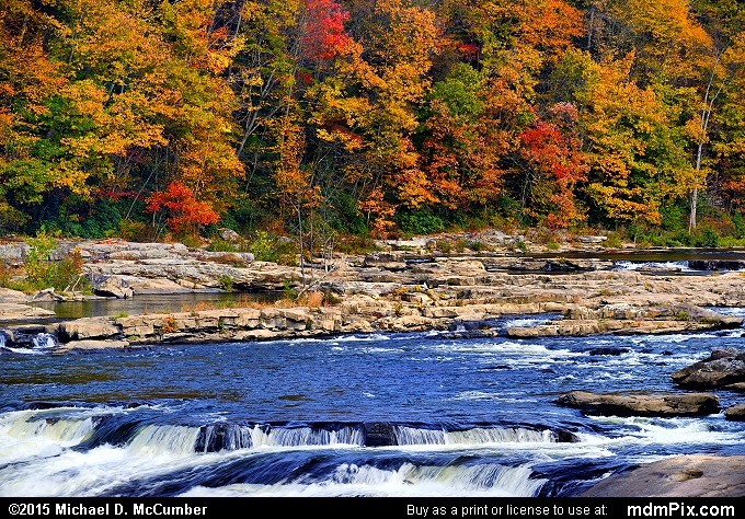 Youghiogheny River (Youghiogheny River Picture 025 - October 22, 2015 from Ohiopyle State Park, Pennsylvania)