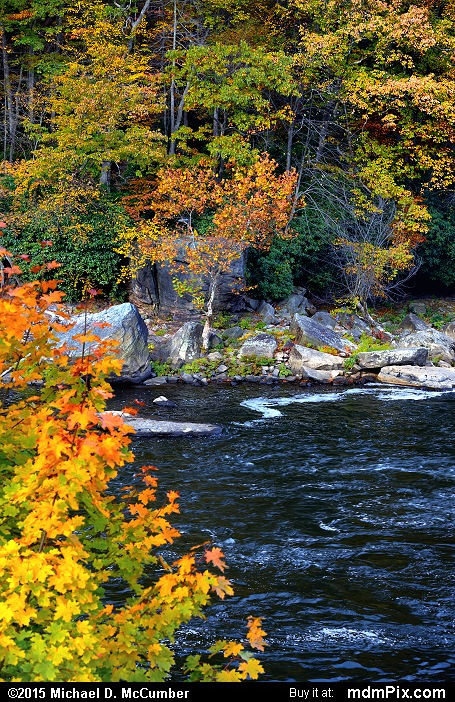 Youghiogheny River (Youghiogheny River Picture 028 - October 22, 2015 from Ohiopyle State Park, Pennsylvania)