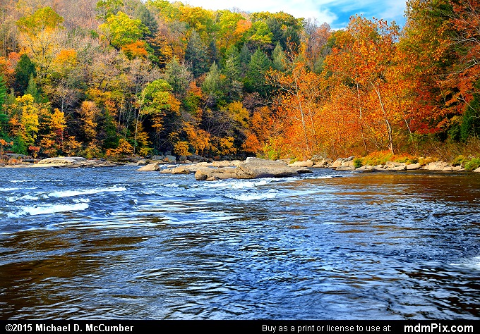 Youghiogheny River (Youghiogheny River Picture 037 - October 22, 2015 from Ohiopyle State Park, Pennsylvania)