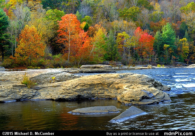 Youghiogheny River (Youghiogheny River Picture 041 - October 22, 2015 from Ohiopyle State Park, Pennsylvania)
