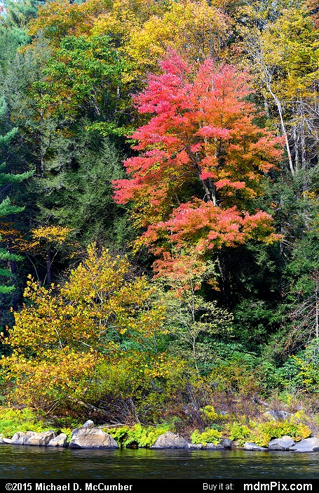 Ferncliff Peninsula (Ferncliff Peninsula Picture 043 - October 22, 2015 from Ohiopyle State Park, Pennsylvania)