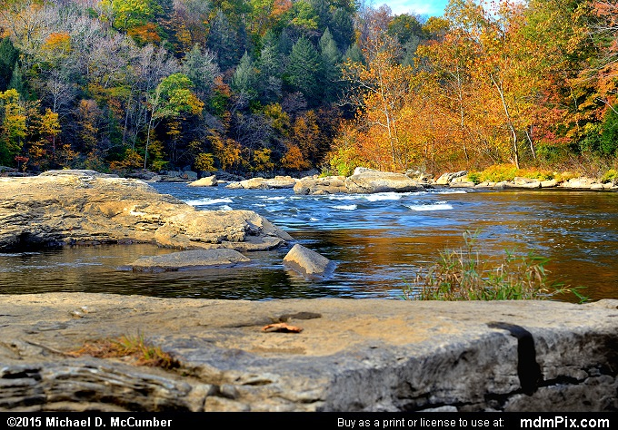 Youghiogheny River (Youghiogheny River Picture 049 - October 22, 2015 from Ohiopyle State Park, Pennsylvania)